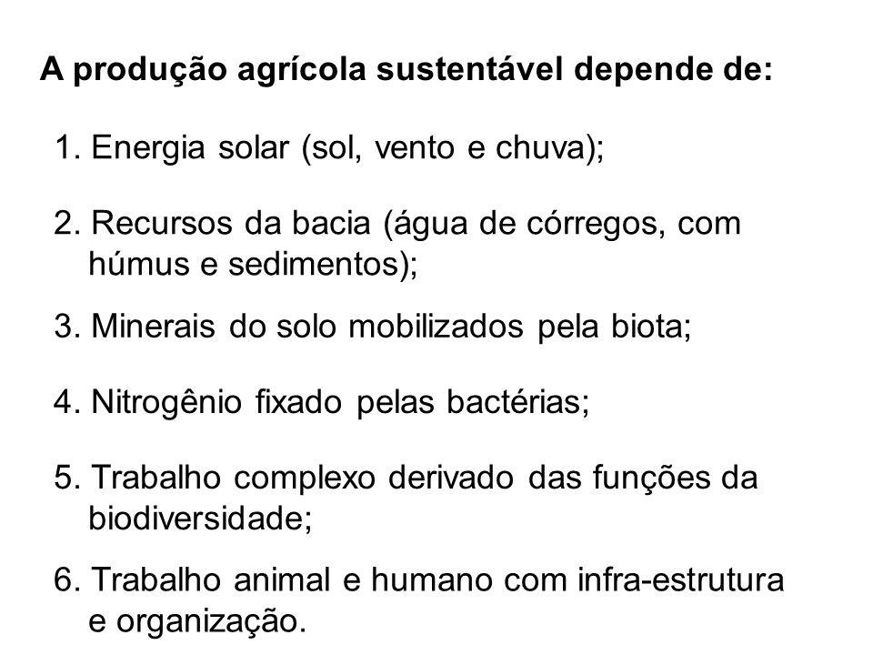 A produção agrícola sustentável depende de: