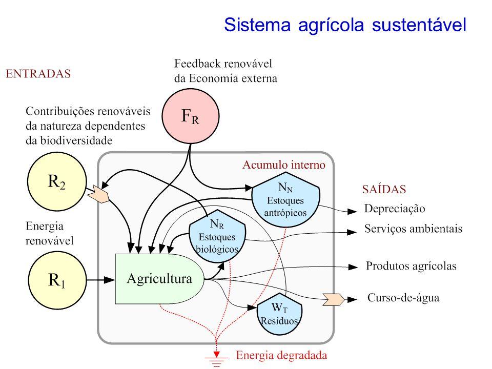 Sistema agrícola sustentável