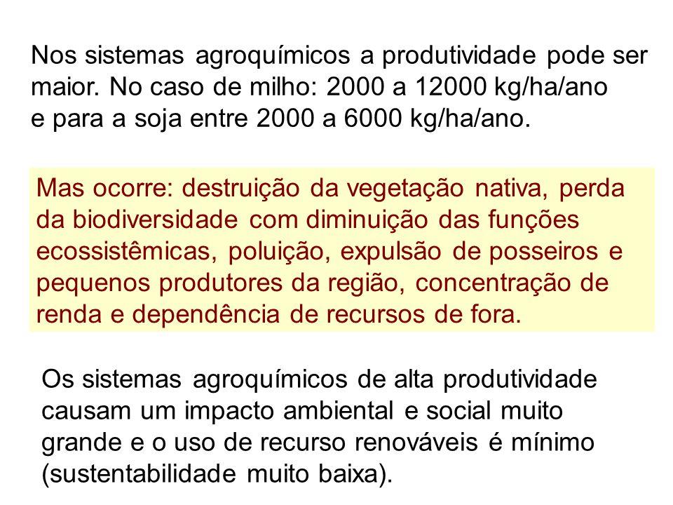 Nos sistemas agroquímicos a produtividade pode ser maior