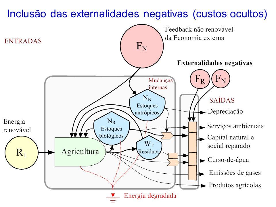 Inclusão das externalidades negativas (custos ocultos)
