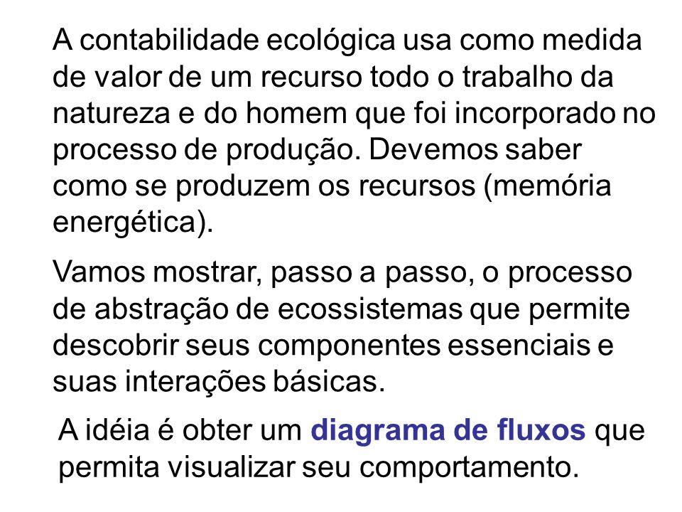 A contabilidade ecológica usa como medida de valor de um recurso todo o trabalho da natureza e do homem que foi incorporado no processo de produção. Devemos saber como se produzem os recursos (memória energética).