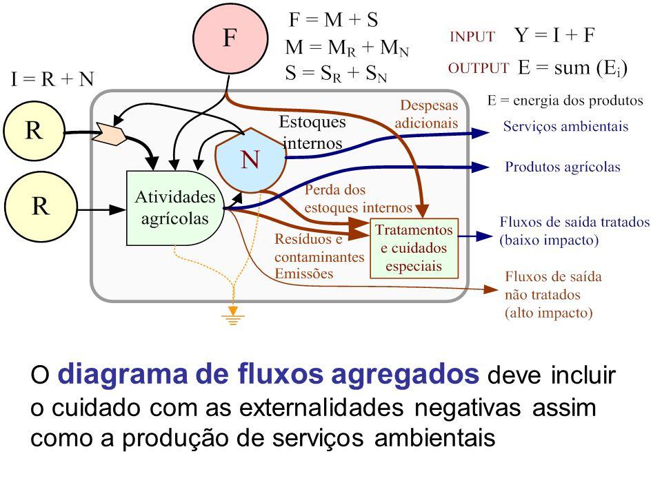 O diagrama de fluxos agregados deve incluir o cuidado com as externalidades negativas assim como a produção de serviços ambientais