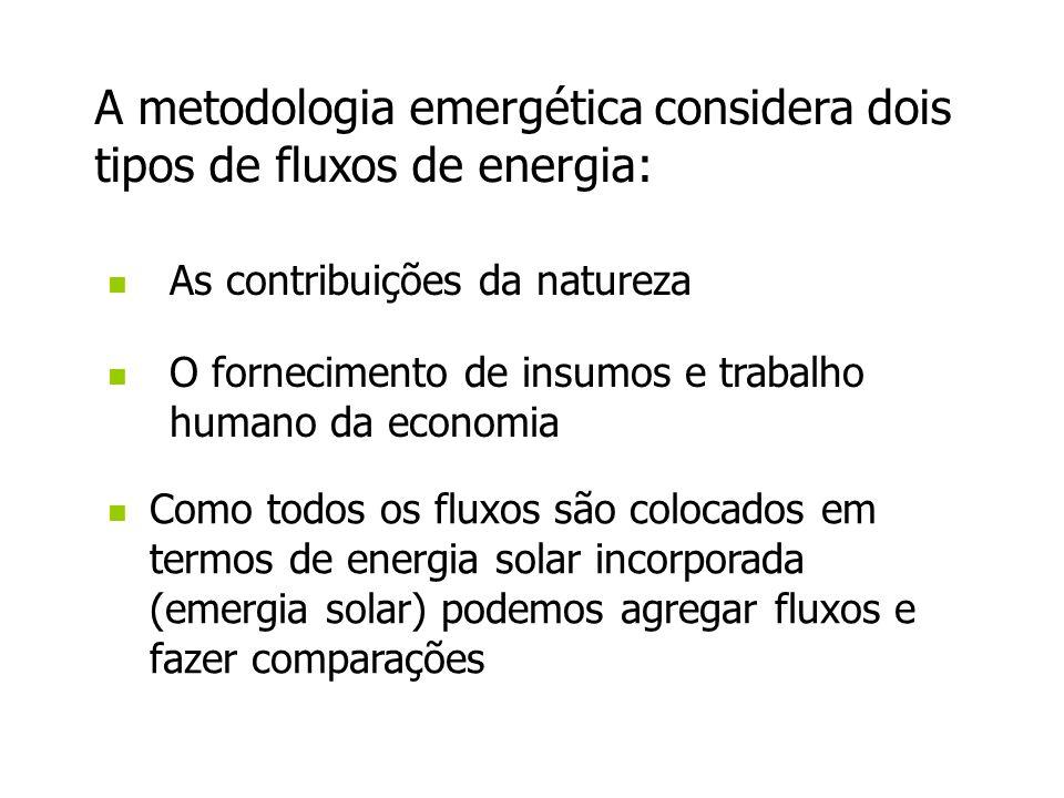 A metodologia emergética considera dois tipos de fluxos de energia: