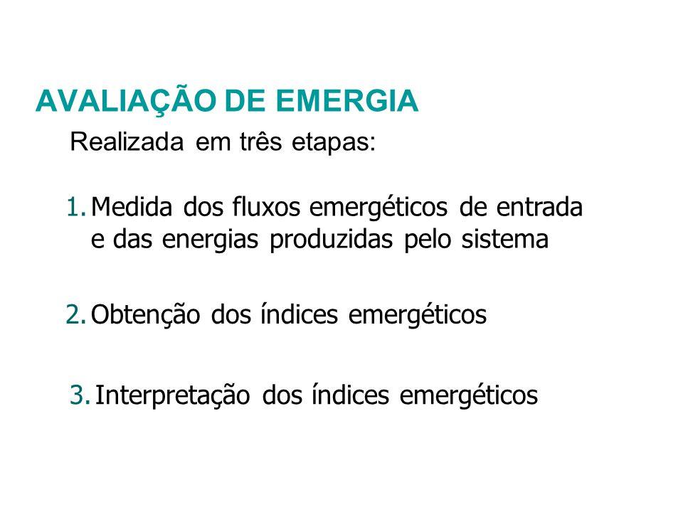 AVALIAÇÃO DE EMERGIA Realizada em três etapas: