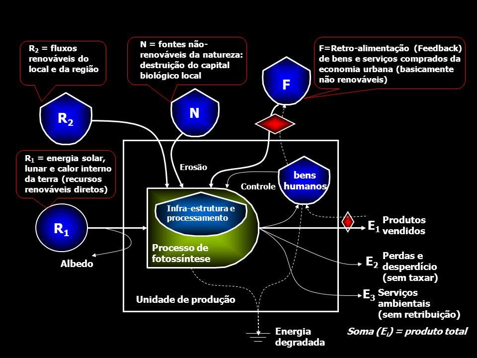 F N R2 R1 E1 E2 E3 bens humanos Processo de fotossíntese Produtos