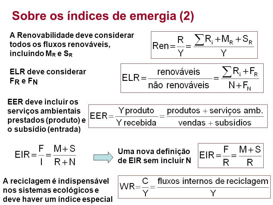 Sobre os índices de emergia (2)