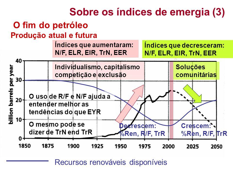 Sobre os índices de emergia (3)