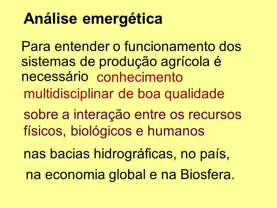 Análise emergética Para entender o funcionamento dos sistemas de produção agrícola é necessário. conhecimento multidisciplinar de boa qualidade.