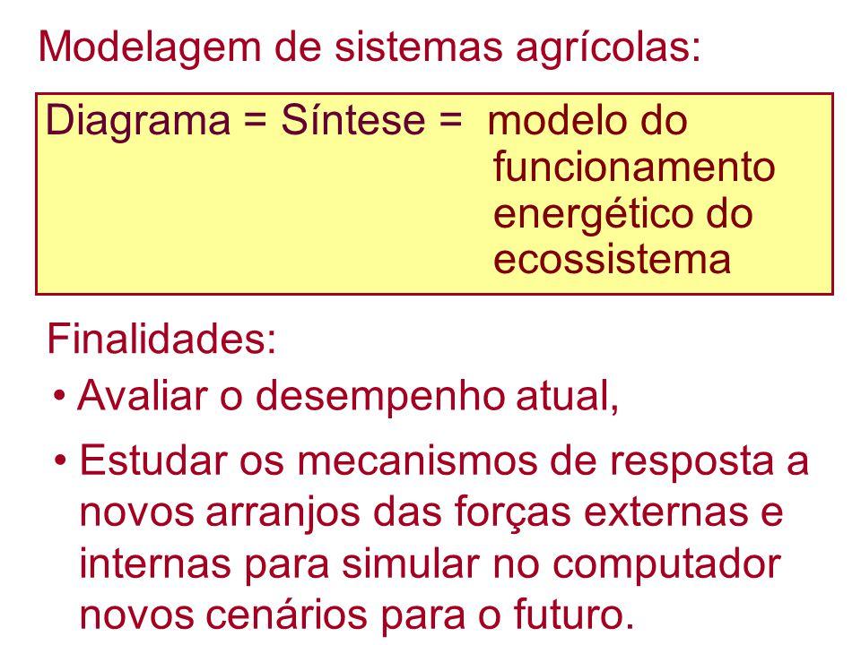 Modelagem de sistemas agrícolas: