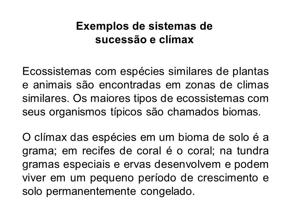 Exemplos de sistemas de sucessão e clímax