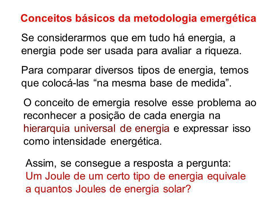 Conceitos básicos da metodologia emergética