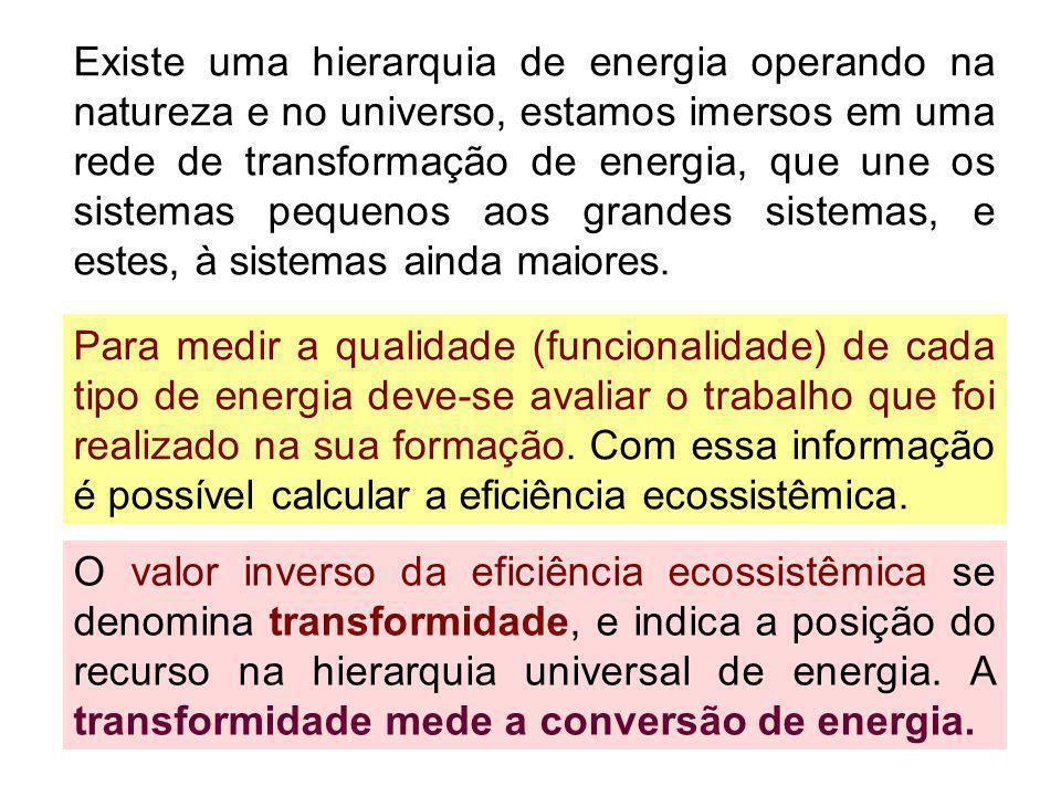 Existe uma hierarquia de energia operando na natureza e no universo, estamos imersos em uma rede de transformação de energia, que une os sistemas pequenos aos grandes sistemas, e estes, à sistemas ainda maiores.