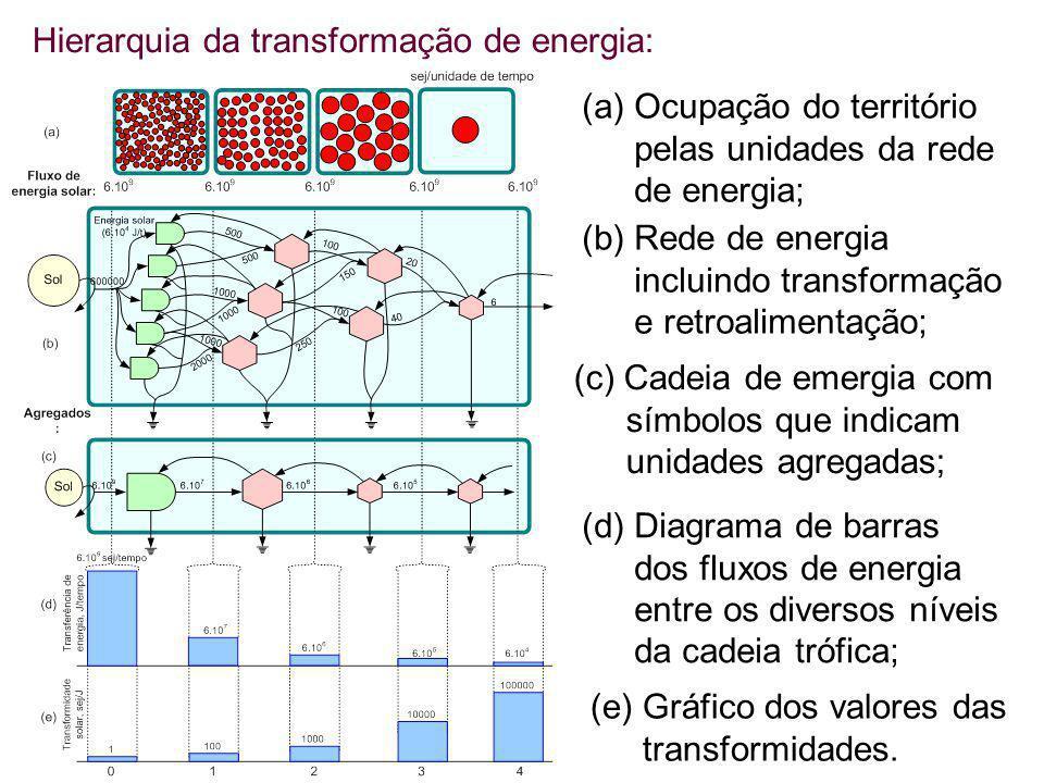 Hierarquia da transformação de energia: