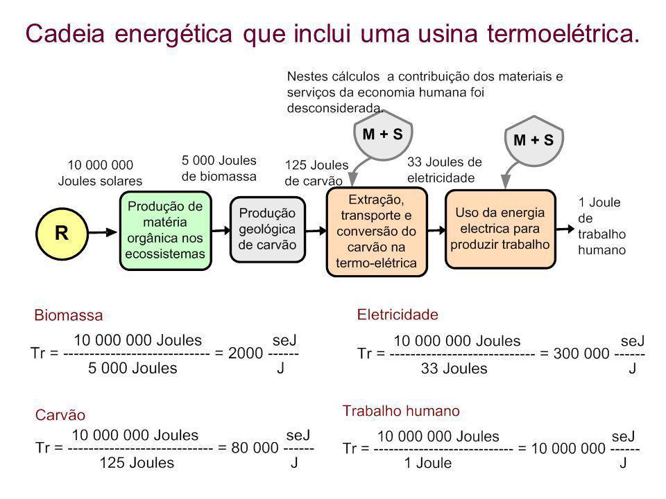 Cadeia energética que inclui uma usina termoelétrica.