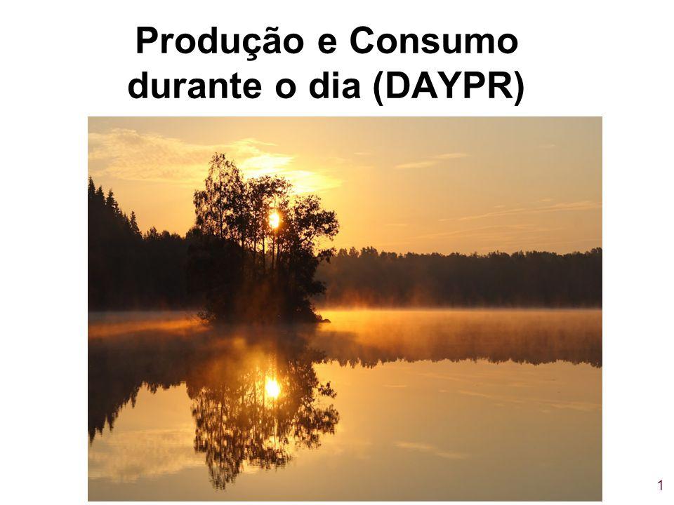 Produção e Consumo durante o dia (DAYPR)