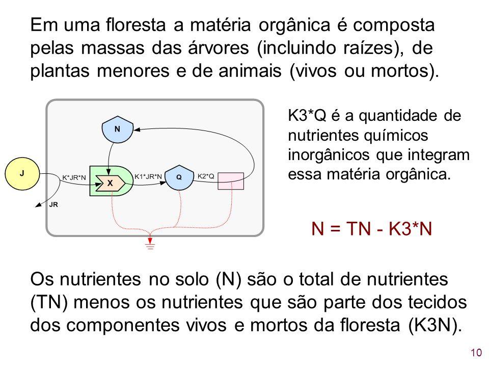 Em uma floresta a matéria orgânica é composta pelas massas das árvores (incluindo raízes), de plantas menores e de animais (vivos ou mortos).