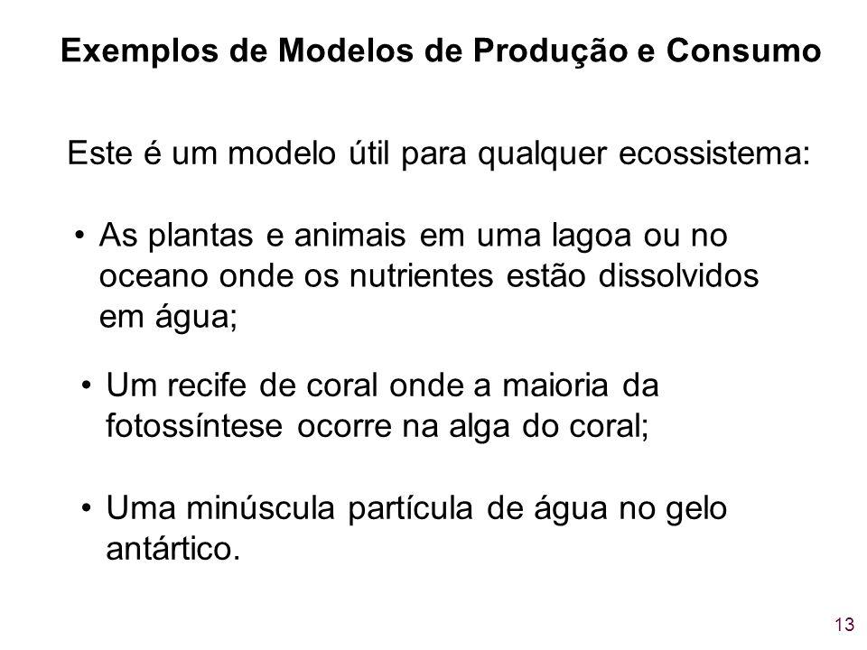Exemplos de Modelos de Produção e Consumo