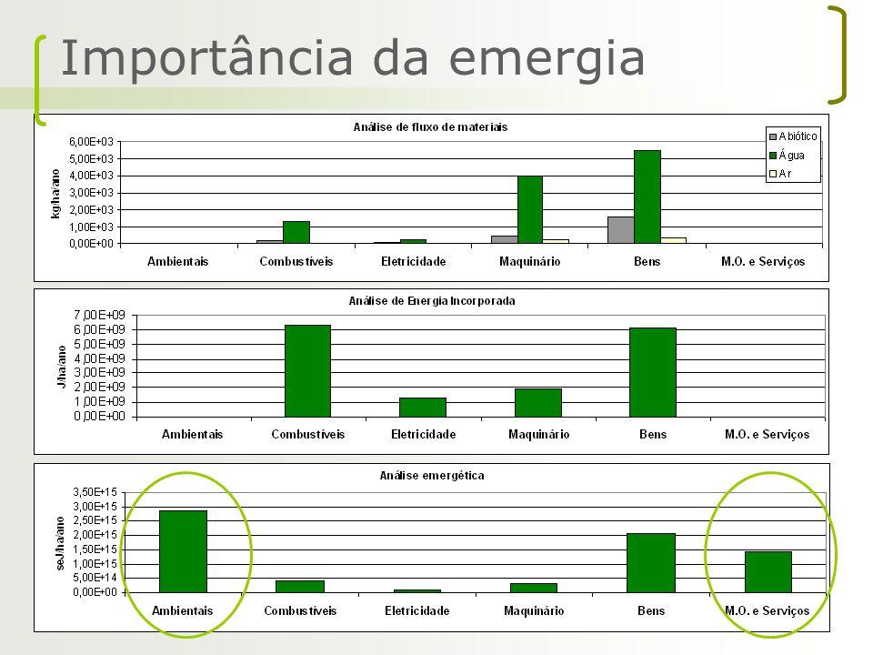 Importância da emergia
