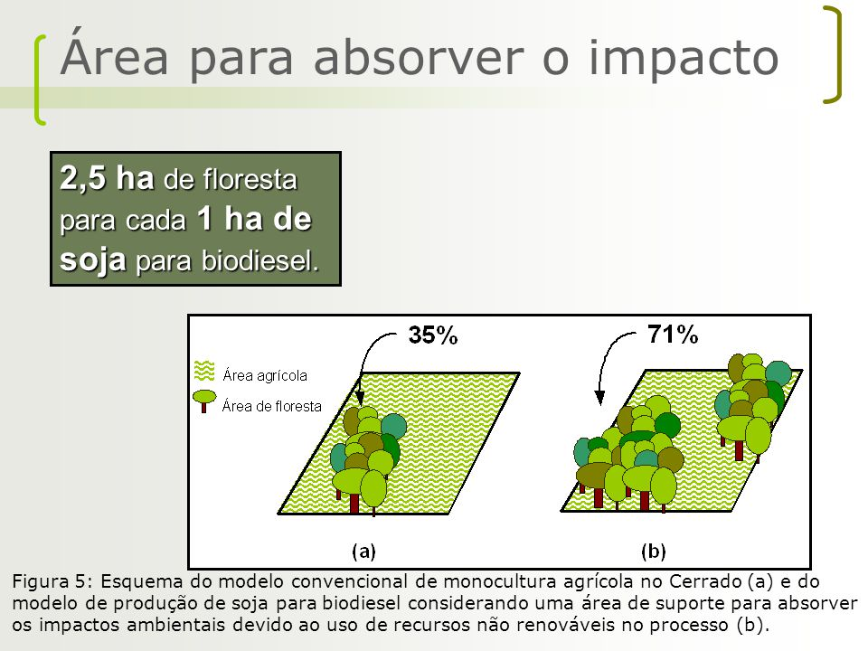 Área para absorver o impacto
