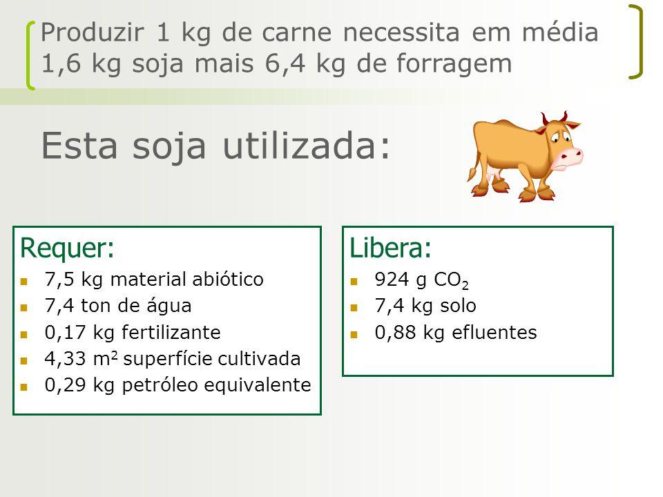 Produzir 1 kg de carne necessita em média 1,6 kg soja mais 6,4 kg de forragem Esta soja utilizada: