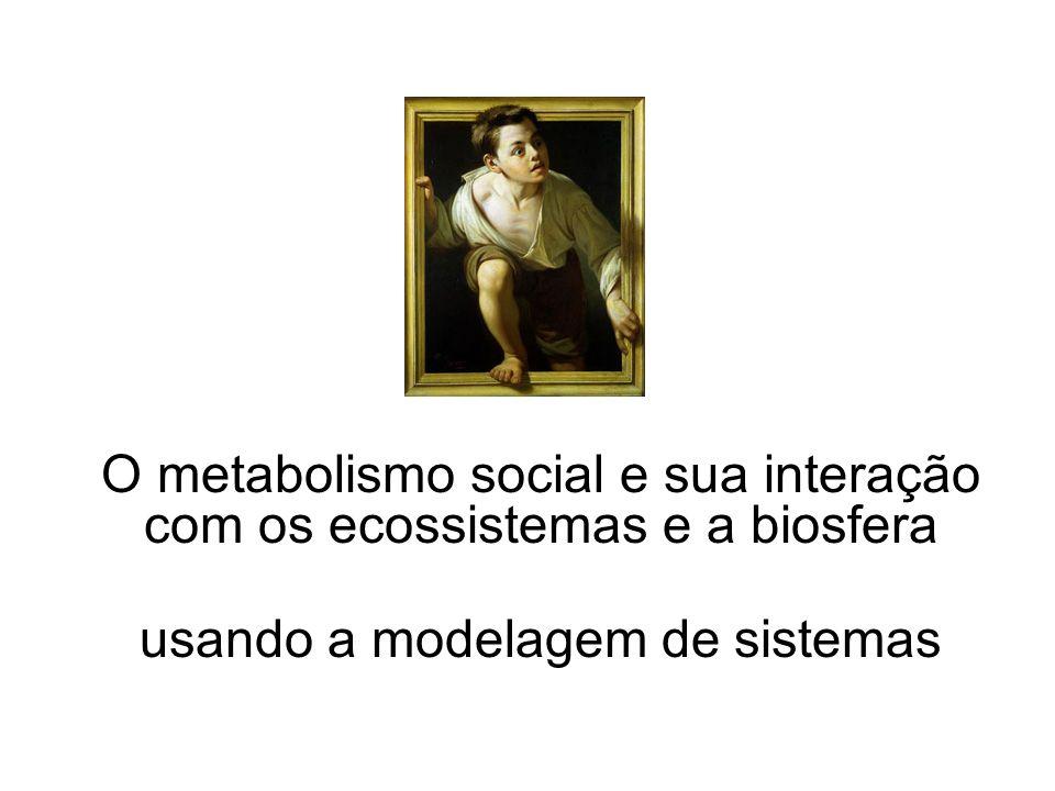 O metabolismo social e sua interação com os ecossistemas e a biosfera