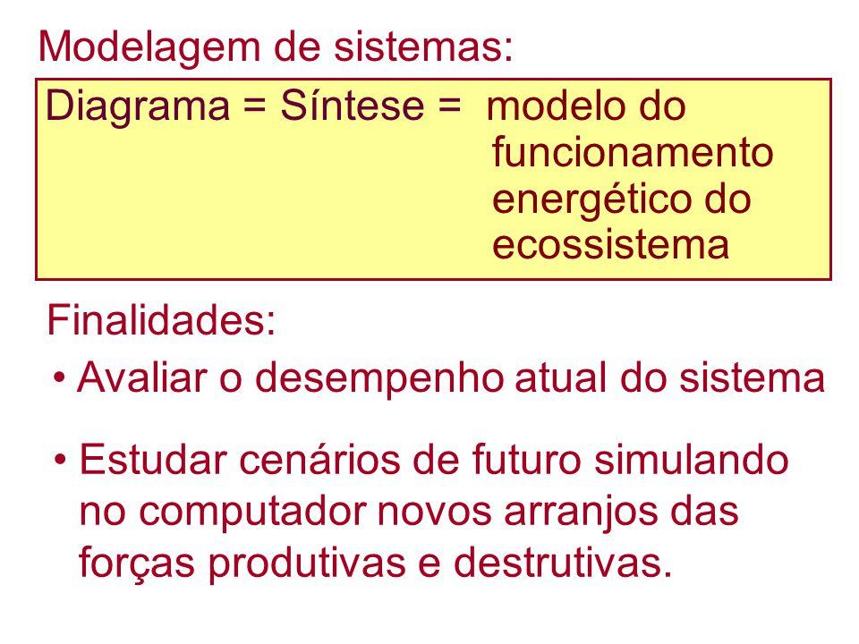 Modelagem de sistemas: