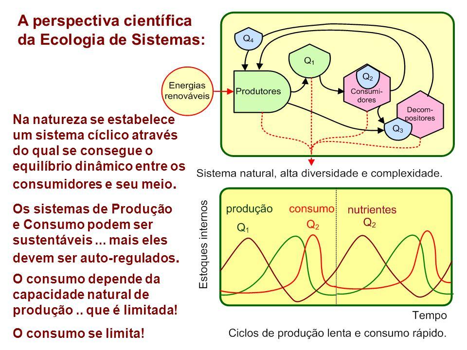 A perspectiva científica da Ecologia de Sistemas: