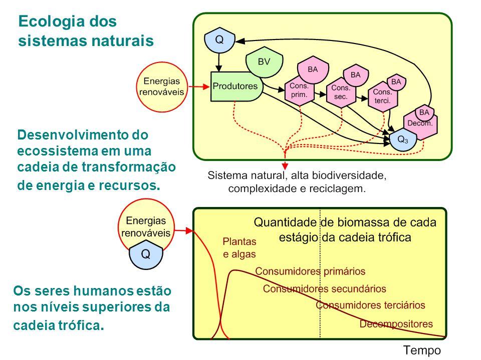 Ecologia dos sistemas naturais