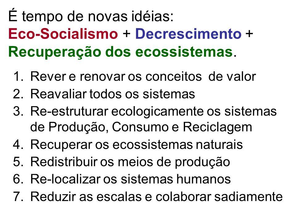 É tempo de novas idéias: Eco-Socialismo + Decrescimento + Recuperação dos ecossistemas.