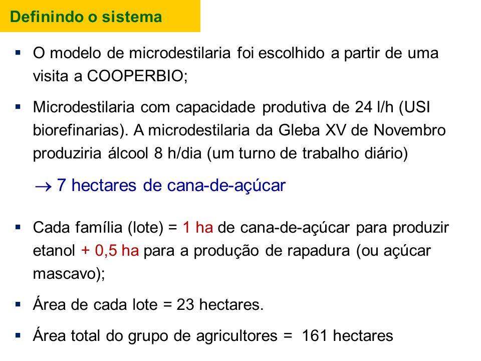  7 hectares de cana-de-açúcar