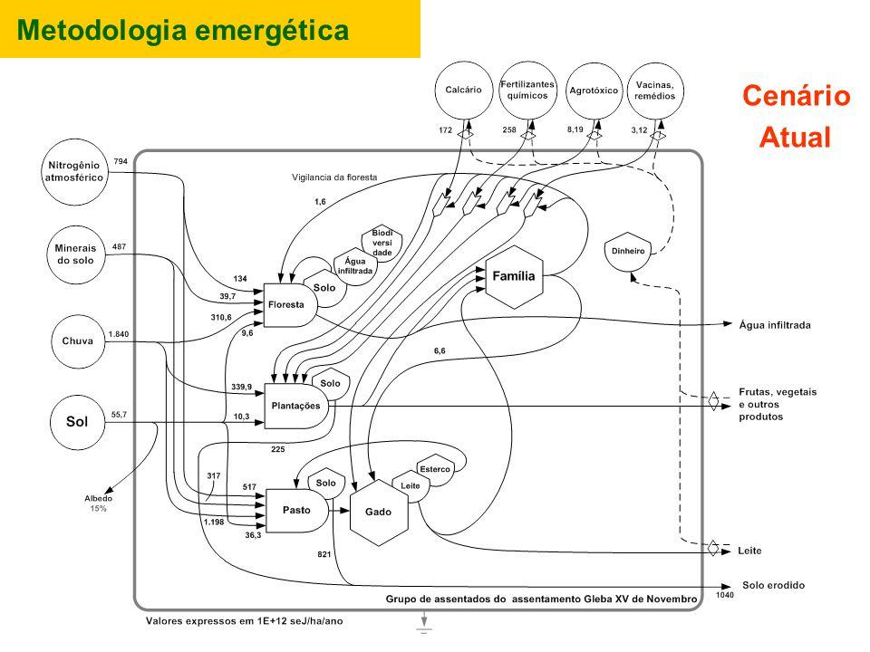 Metodologia emergética