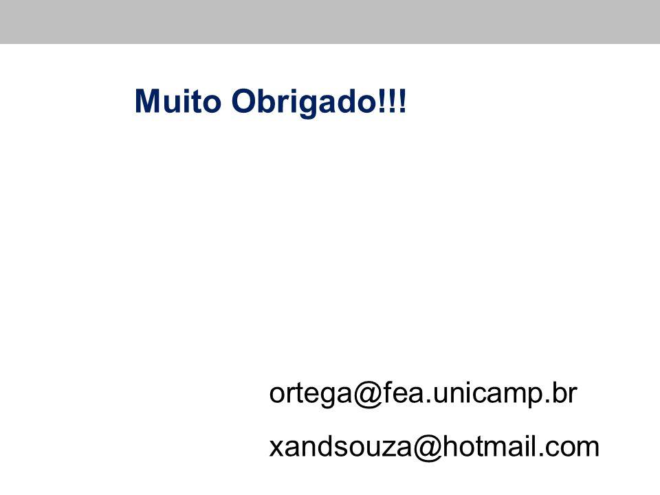 Muito Obrigado!!! ortega@fea.unicamp.br xandsouza@hotmail.com 24