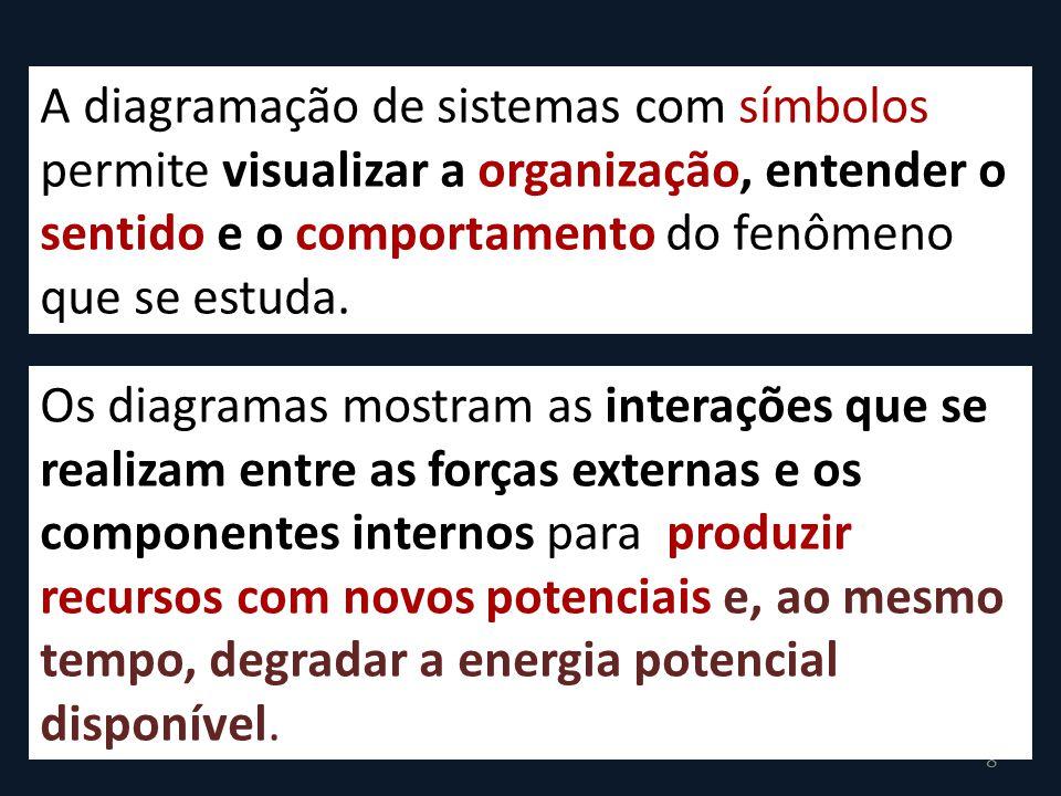 A diagramação de sistemas com símbolos permite visualizar a organização, entender o sentido e o comportamento do fenômeno que se estuda.