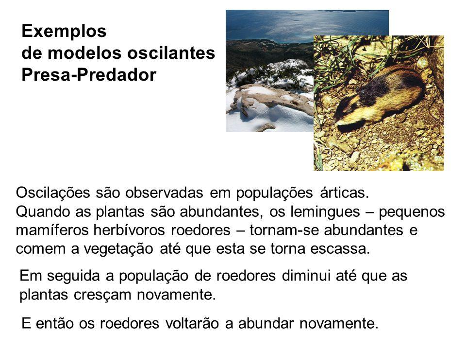 de modelos oscilantes Presa-Predador