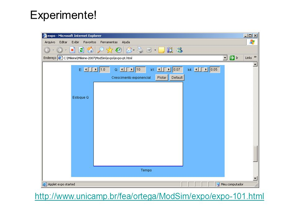 Experimente! http://www.unicamp.br/fea/ortega/ModSim/expo/expo-101.html