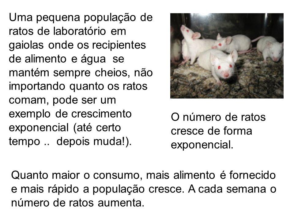 Uma pequena população de ratos de laboratório em gaiolas onde os recipientes de alimento e água se mantém sempre cheios, não importando quanto os ratos comam, pode ser um exemplo de crescimento exponencial (até certo tempo .. depois muda!).