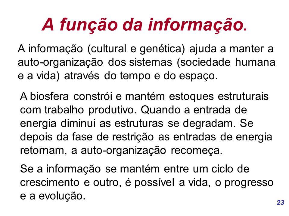 A função da informação.