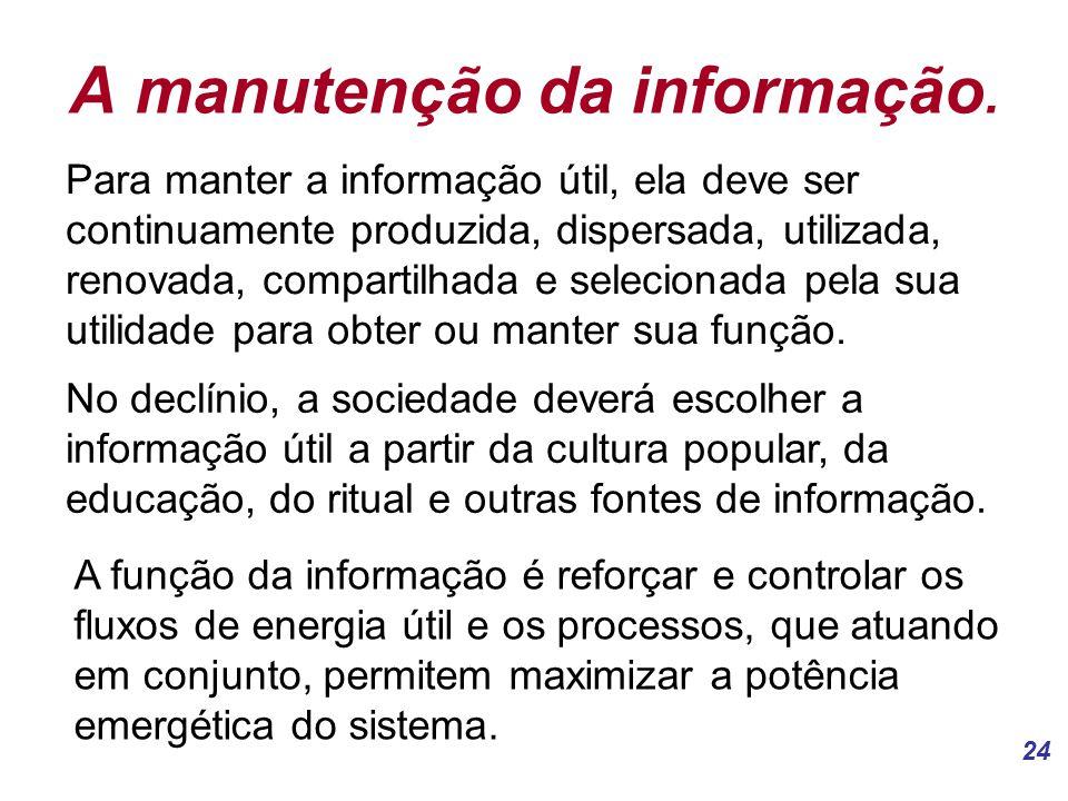 A manutenção da informação.