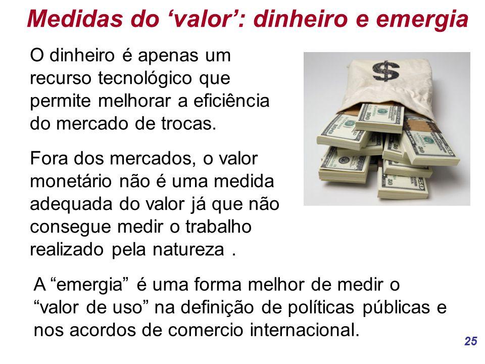 Medidas do 'valor': dinheiro e emergia