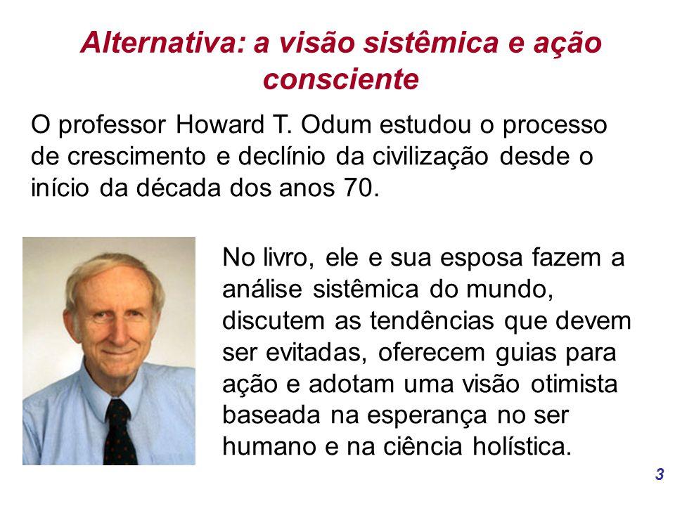 Alternativa: a visão sistêmica e ação consciente