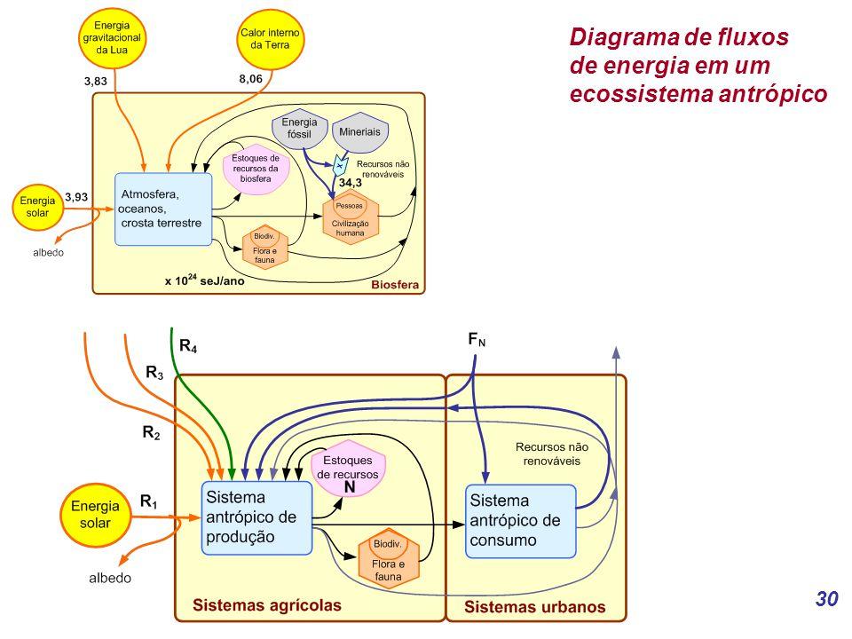 Diagrama de fluxos de energia em um ecossistema antrópico