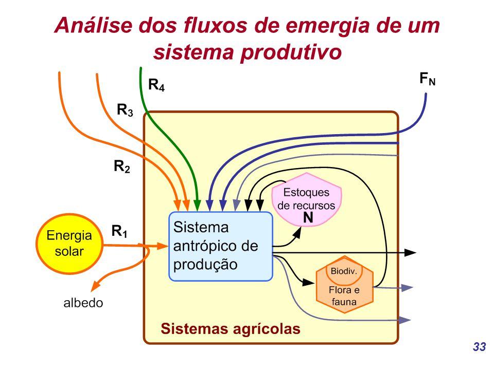 Análise dos fluxos de emergia de um sistema produtivo