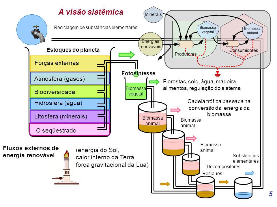 Cadeia trófica baseada na conversão da energia da biomassa