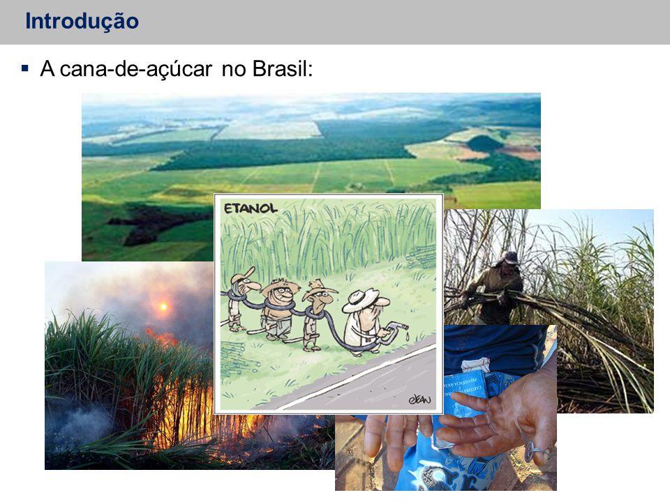 A cana-de-açúcar no Brasil: