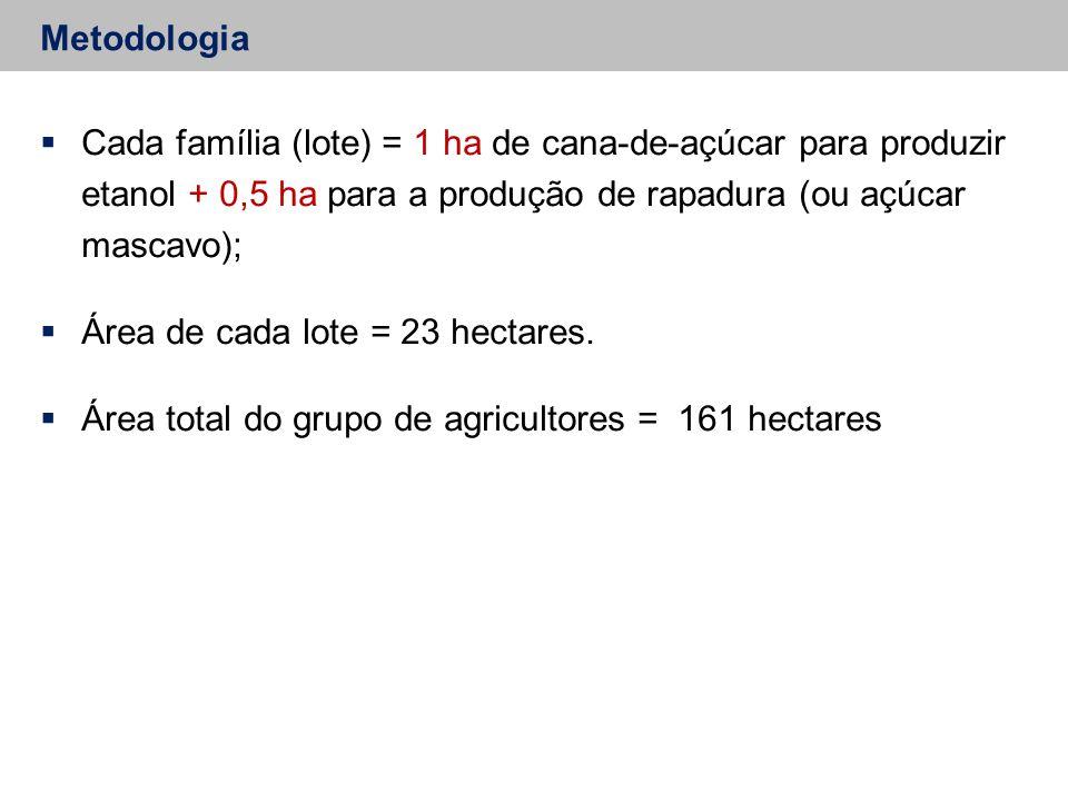 Área de cada lote = 23 hectares.