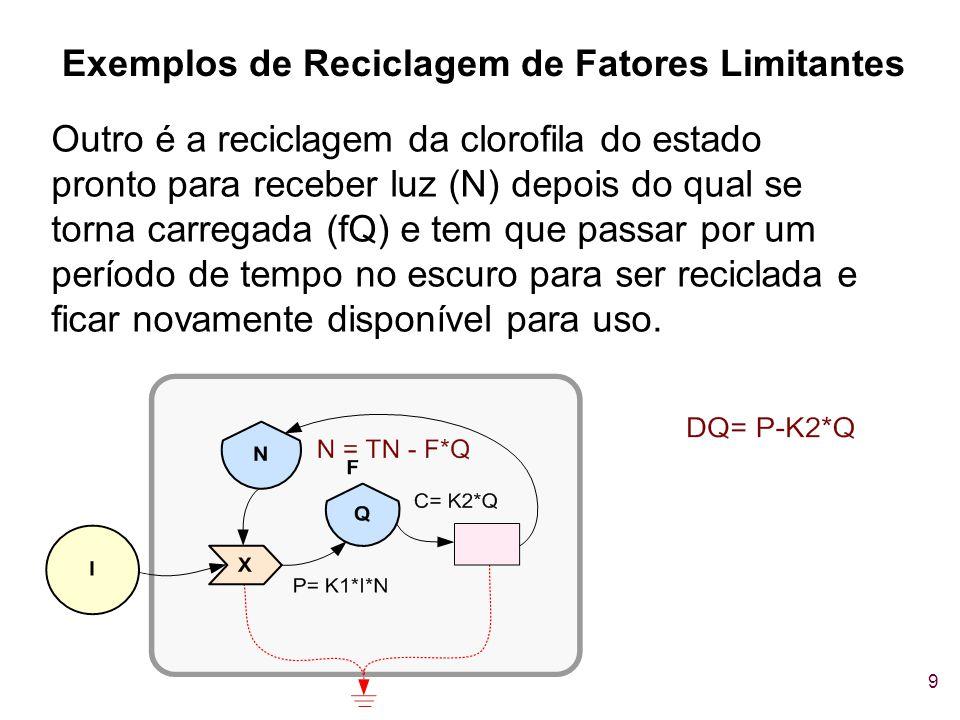 Exemplos de Reciclagem de Fatores Limitantes