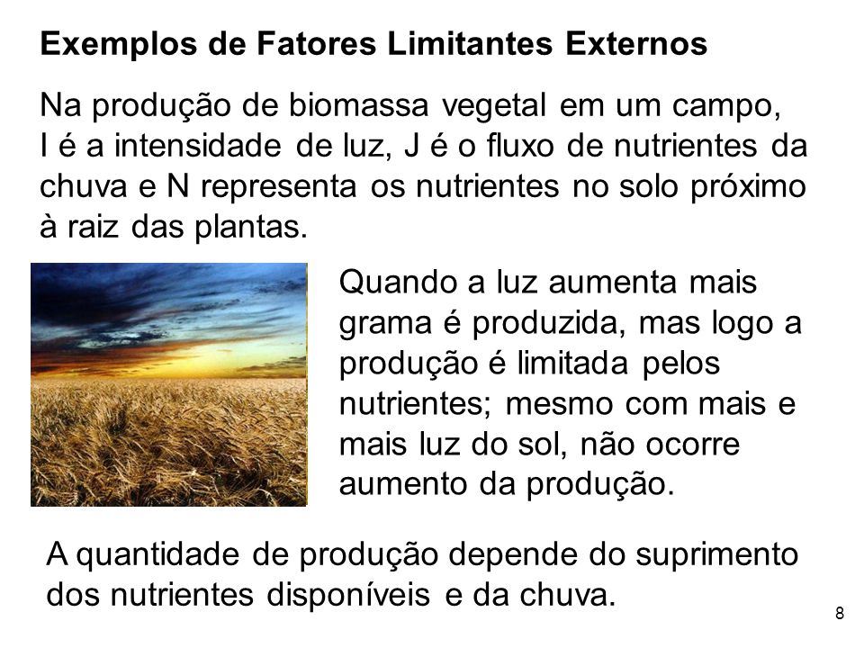 Exemplos de Fatores Limitantes Externos
