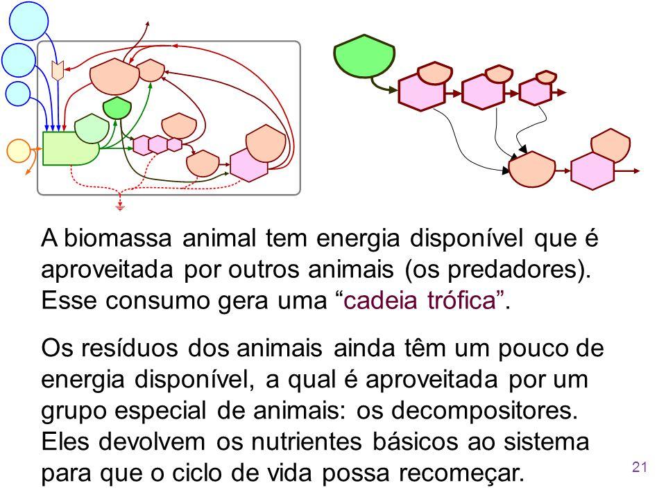 A biomassa animal tem energia disponível que é aproveitada por outros animais (os predadores). Esse consumo gera uma cadeia trófica .
