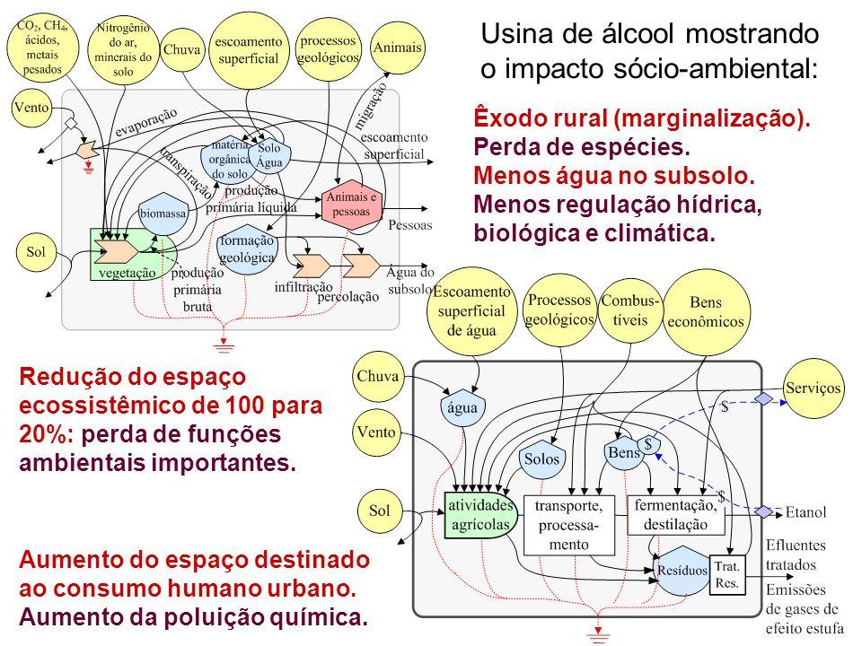 Usina de álcool mostrando o impacto sócio-ambiental: