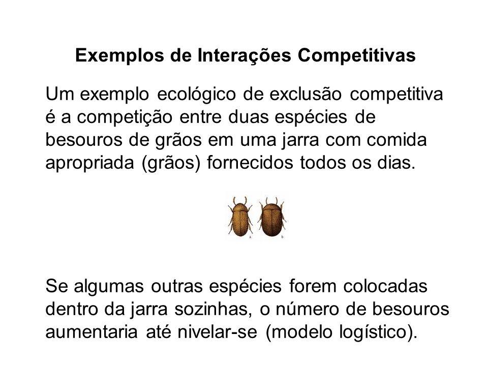 Exemplos de Interações Competitivas